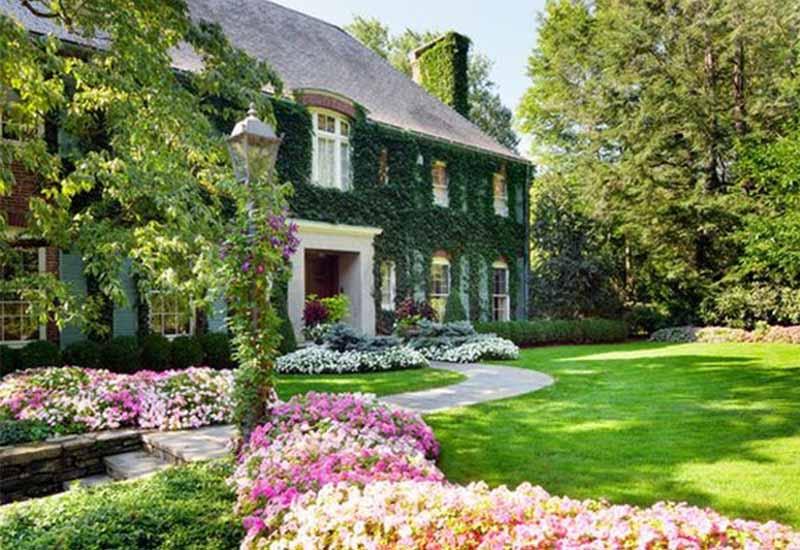 Lợi ích thiết kế cảnh quan sân vườn